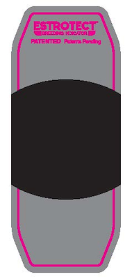 101035 Pink_patch(2018).jpg