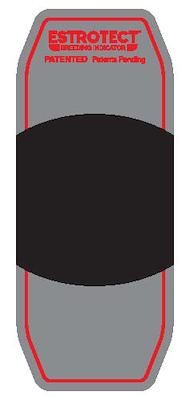 101035 red.jpg