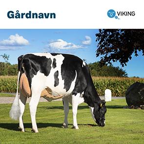 101769 Gårdskilt Holstein 1000x1000mm.jpg