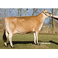 VJ Tester daughter no. 45007-5107 from Ole S¢rensen_Ribe.jpg
