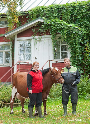 VR Vilde daughter no 11847418 (Myrna) from Ahonen Ari_Askola - scenic1.jpg